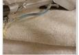 Diamond Carpet & Cleaning Service - Des Moines, IA. Carpet Cleaning Service