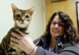 Akron Veterinary Referral & Emergency Center - Copley, OH