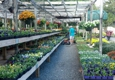 Southern Styles Nursery & Garden Ctr - Charlotte, NC
