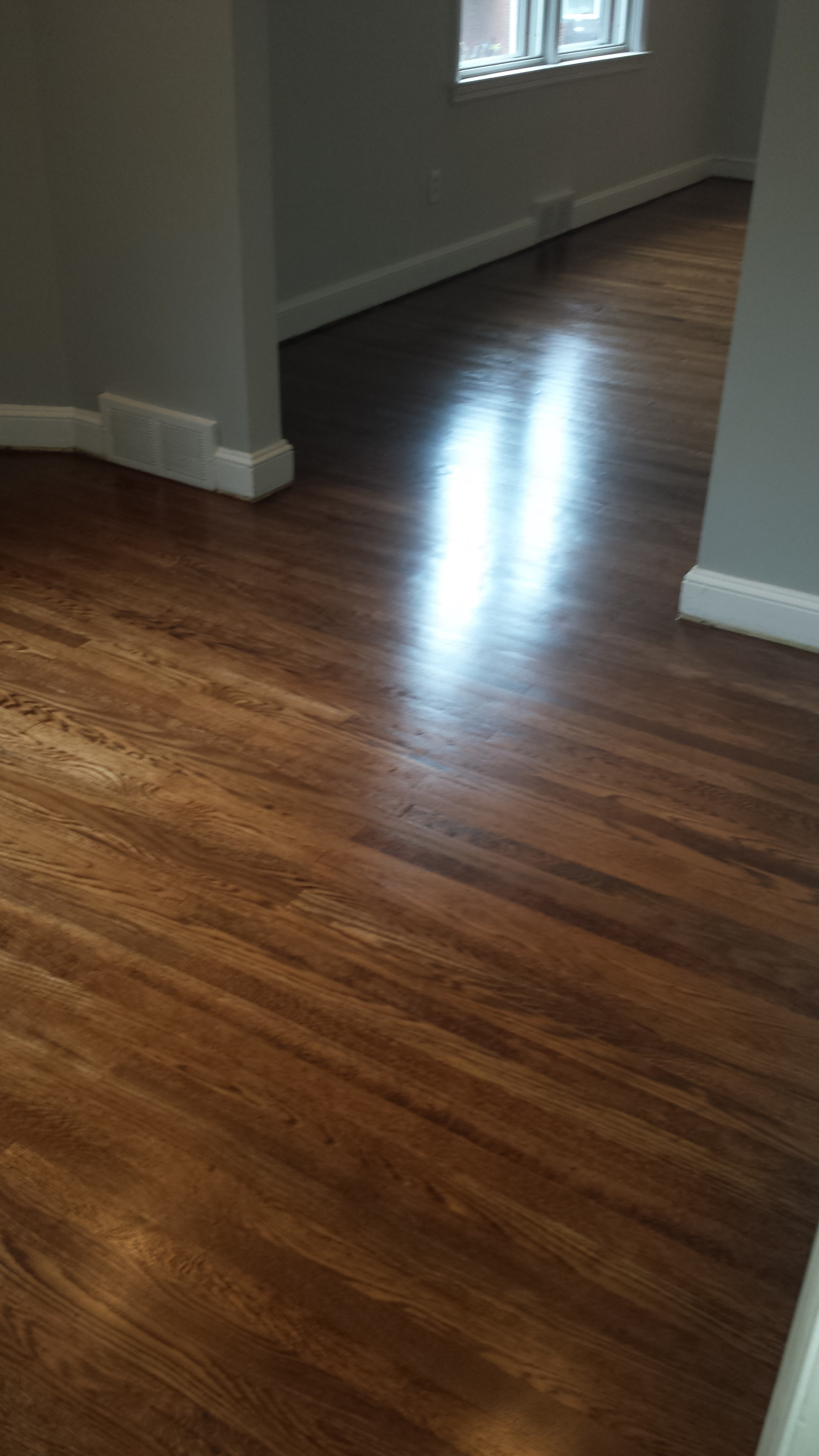 Professional Carpet and Upholstery Cleaning Plus 713 Quince Ln