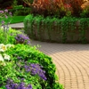 Arborscape Lawn & Hartwood Tree Care