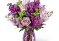Brown Pleasance Florists - Lakewood, OH