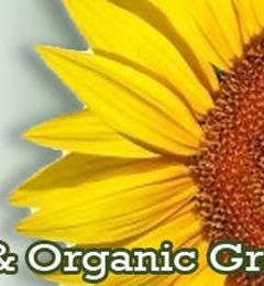 Sunflower Natural Foods Market - Woodstock, NY