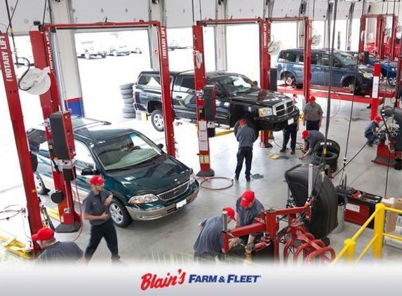 Blain's Farm and Fleet - Morton, IL