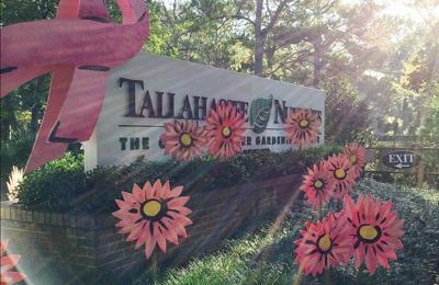 Tallahassee Nurseries - Tallahassee, FL
