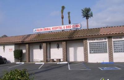 Avalon Animal Hospital & Bird Hospital - Carson, CA