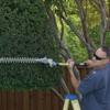 Denson Tree Service