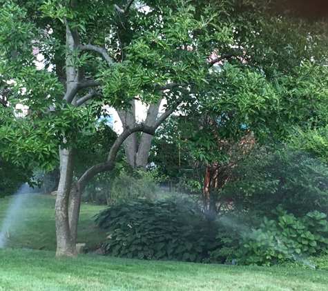 Morning Dew Lawn Sprinklers Inc. - White Plains, NY. Morning Dew Lawn Sprinklers just finished a lawn sprinkler repair in White Plains, NY and the Irrigation System now operates like new.