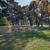 Mount Auburn Funeral Home