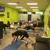 Allstar Nutrition, Wellness & Fit Club