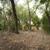 Miami-Dade County Camp Owaissa Bauer