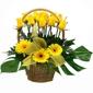 Blooming Creations Florist - San Antonio, TX