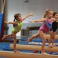 Euro Stars Gymnastics Inc - Plymouth, MI