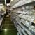 ABC Plumbing Supply & Hardware