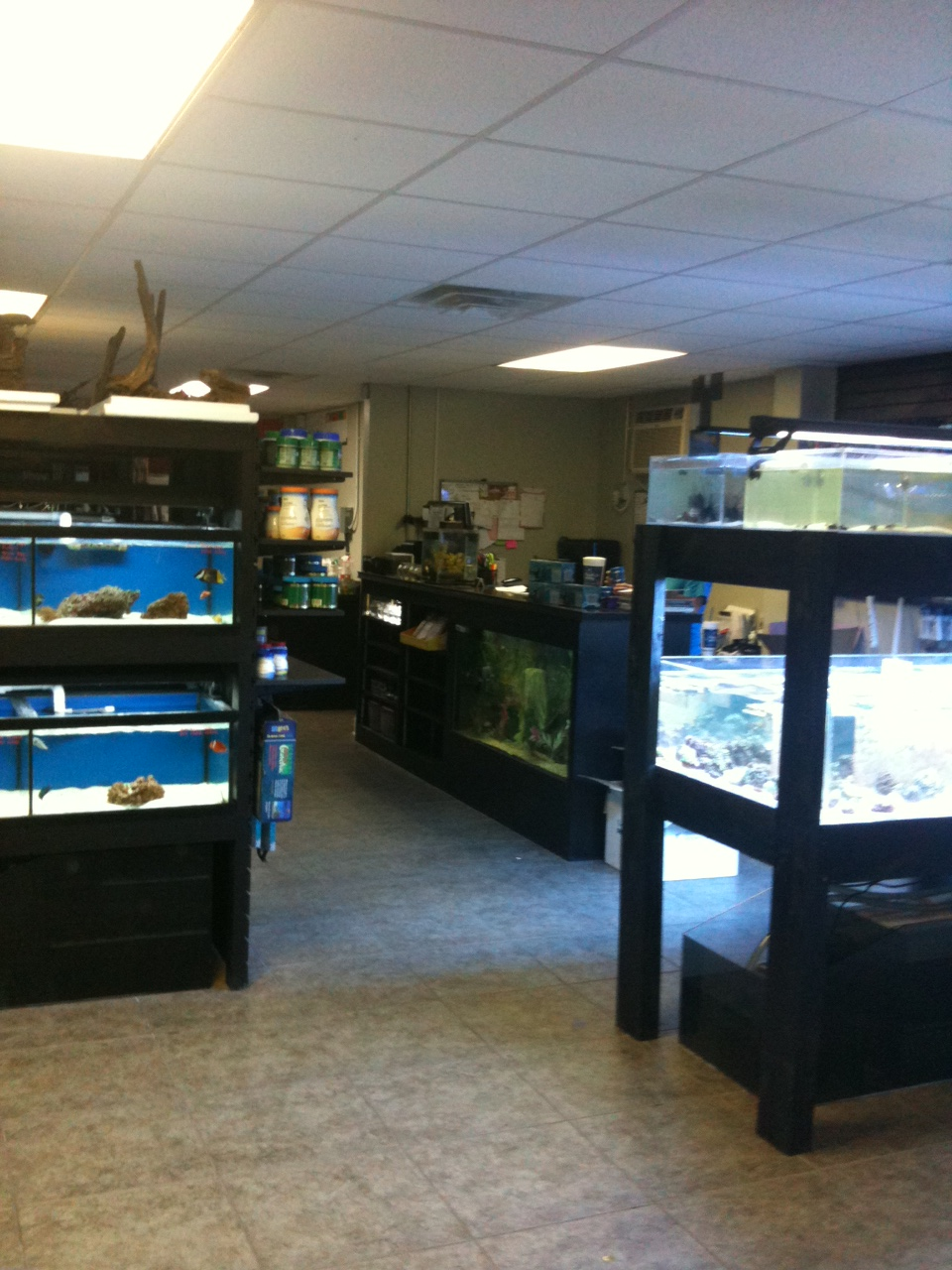 The Aquarium Store 10549 Airline Hwy Baton Rouge La 70816