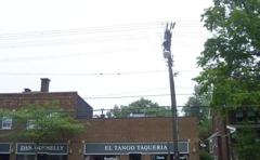 El Tango Taqueria