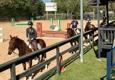 Southern Breeze Equestrian Center - Fresno, TX. Rice Team headquarters