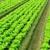 Scioto Farm Supply