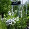 Blumen Gardens Inc