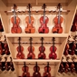 Terra Nova Violins - San Antonio, TX