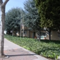 Cedar Grove Apartments - San Leandro, CA