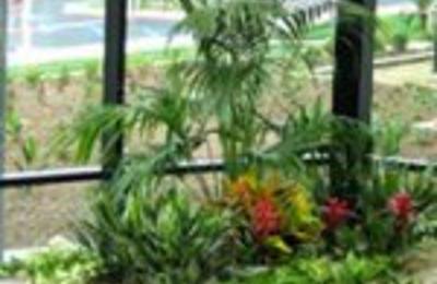 Creative Interior Plantscapes - Burlington, MA
