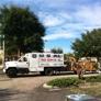 USA Tree Service - Weeki Wachee, FL