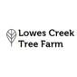 Lowes Creek Tree Farm - Eleva, WI