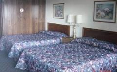 Point Motel
