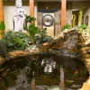 Tropaquatic Pond & Aquarium Specialists