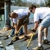 Specialty Roofing Seattle