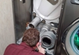 Grigsbys  In Home Appliance Repair - Pikeville, KY