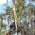 Pete & Ron's Tree Service Inc