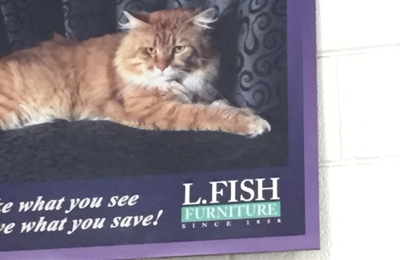 L Fish Furniture   Indianapolis, IN
