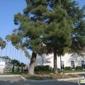 Abrakadoodle Inc - Fremont, CA