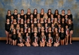 Olympiad Gymnastics Chesterfield - Chesterfield, MO