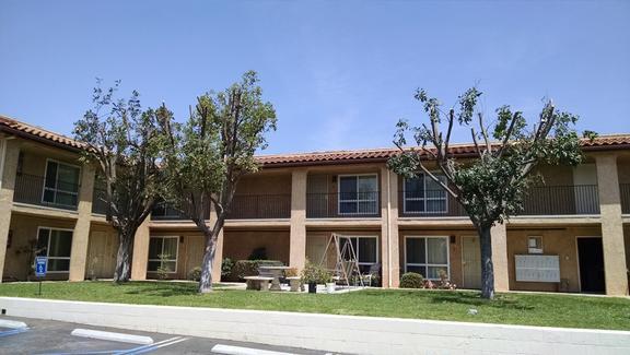 All Purpose Service - Chula Vista, CA