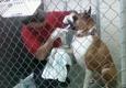 Dogwood Acres Boarding Kennel - Sylva, NC