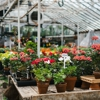 Michler's Florist, Greenhouses & Garden Design