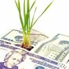 Happy Investments, Inc. Newport Beach CA