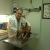 Throgs Neck Animal Hospital
