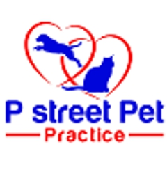 P Street Pet Practice - Washington, DC