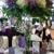 Arrowhead Flowers
