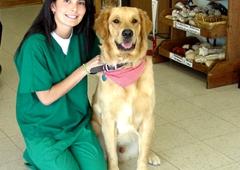 North Penn Veterinary Hospital - Oklahoma City, OK