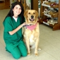 North Penn Veterinary Hospital - Oklahoma City, OK