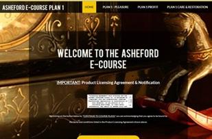 I chose the e-Course version... Love it!