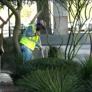 HMI Commercial Landscape - Phoenix, AZ