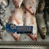 Delaware Chicken Farm