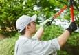Bobcat Tree Service - Virginia Beach, VA