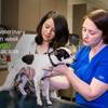 Combs Veterinary Clinic
